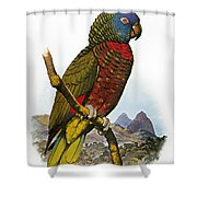 St Lucia Amazon Parrot Shower Curtain