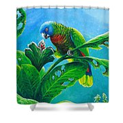 St. Lucia Parrot And Bwa Pain Marron Shower Curtain