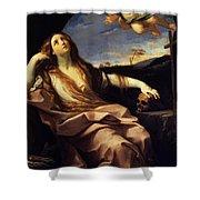 St Mary Magdalene 1632 Shower Curtain