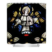 St Mary Redcliffe Stained Glass Close Up H Shower Curtain