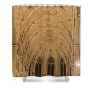 St. Patrick's Cathedral - Detail Of Main Altar's Ceiling Shower Curtain