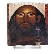 St. Paul - Lgpau Shower Curtain