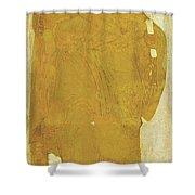 St Peter. From Deisus Tier Shower Curtain