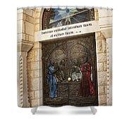 St. Peter's Church Shower Curtain