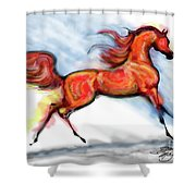 Staceys Arabian Horse Shower Curtain