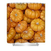 Stacked Mini Pumpkins Shower Curtain