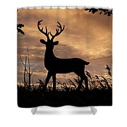Stag 002 Shower Curtain