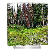 Stag Forest Shower Curtain
