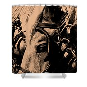 Stage Coach Horses Shower Curtain