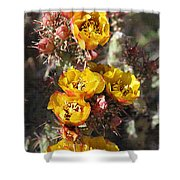 Staghorn Cholla Blossoms Shower Curtain