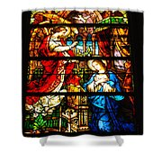 Stained Glass - Cape May Shower Curtain