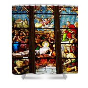 Stained Glass Beauty #38 Shower Curtain