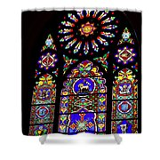 Stained Glass Beauty #46 Shower Curtain