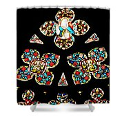 Stained Glass Glory Shower Curtain
