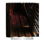 Stained Glass Impression Notre Dame Paris Shower Curtain