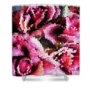 Stained Glass Roses 2 Shower Curtain