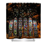 Stained Glass Window Christ Church Cathedral 1 Shower Curtain