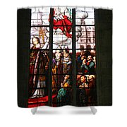 Stained Glass Window Vi Shower Curtain