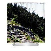 Stairs Along Skyline Trail Shower Curtain