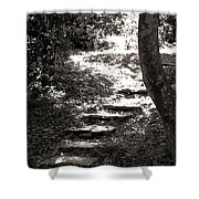 Stairs Shower Curtain