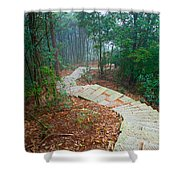 Stairs Down Mountain Shower Curtain