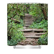 Stairs Going Up Hillside Shower Curtain