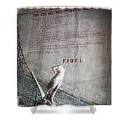 Stairs Of La Guarida Shower Curtain