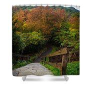 Stairs To The Graveyard Shower Curtain