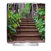 Stairway To Beauty Shower Curtain