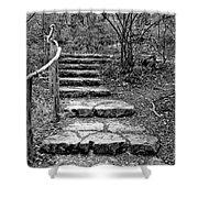 Stairway To Nature Shower Curtain