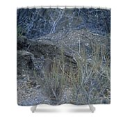 Stalked - Mountain Lion Shower Curtain