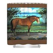 Stallion Portrait Shower Curtain
