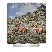 Stampede In The Sage Shower Curtain