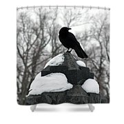 Crow Stance On Cold Stone Shower Curtain