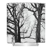 Stand Alones Shower Curtain