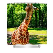 Standing Above The Rest Shower Curtain