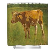 Standing Calf Shower Curtain