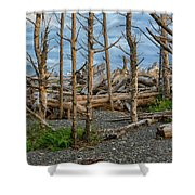 Standing Driftwood Shower Curtain