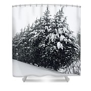 Standing Guard In Snow Shower Curtain