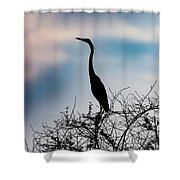 Standing High - Silhouette Shower Curtain