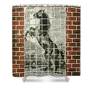 Standing Horse Shower Curtain