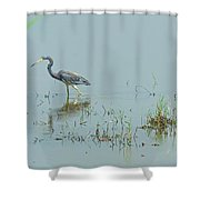 Standing In The Marshes Shower Curtain