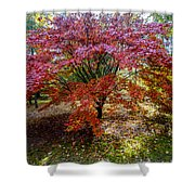 Standing Out From The Crowd Shower Curtain