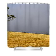 Standing Proudly Shower Curtain