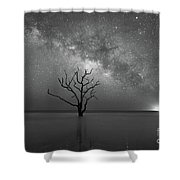 Standing Still Bw Shower Curtain