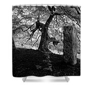 Standing Stones Near The Tree Shower Curtain