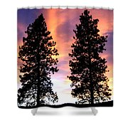 Standing Tall At Sundown Shower Curtain