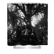 Standing Tall Shower Curtain by David Lee Thompson