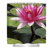Standing Tall In The Pond Shower Curtain