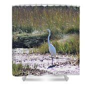 Standing There Shower Curtain